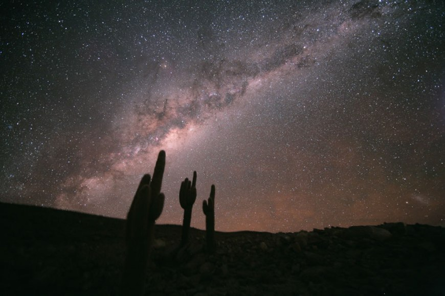 ESO - Echinopsis Atacamensis and the Milky Way
