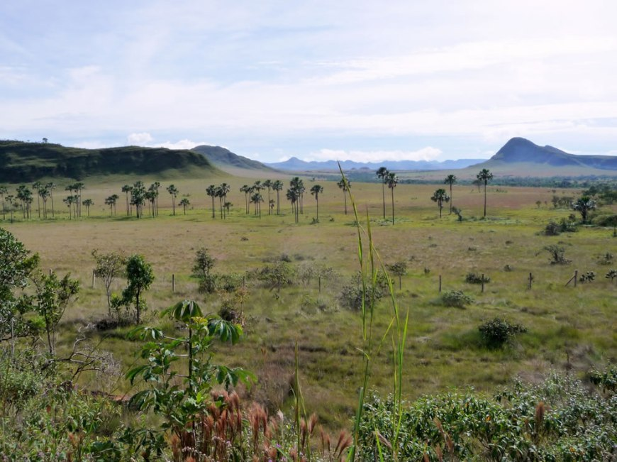 Brazil landscape of Chapada dos Veadeiros