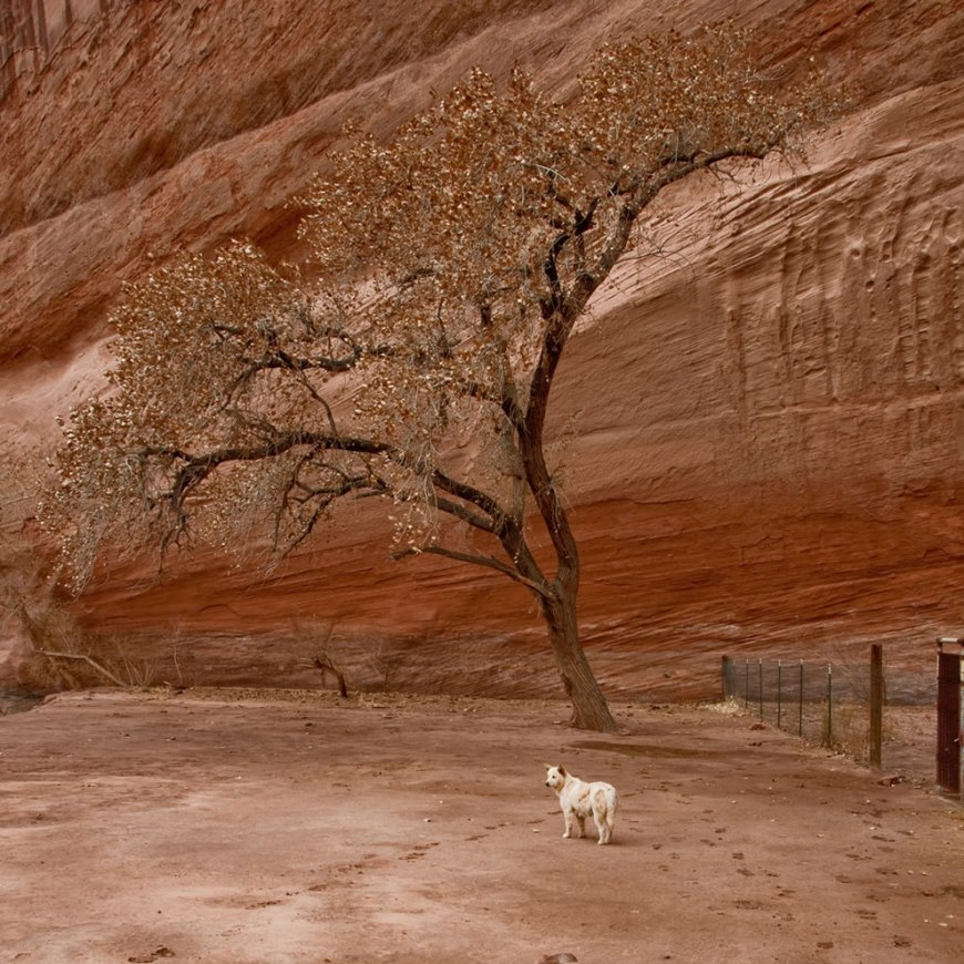 in Canyon de Chelly