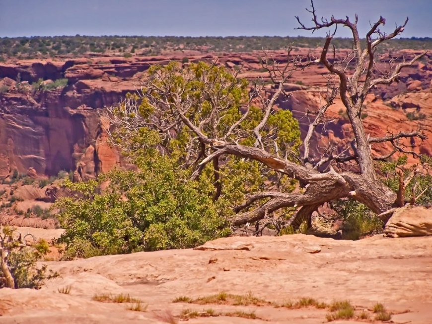 Reflecting one of the longest continuously inhabited landscapes of North America, Canyon de   Chelly sustains a living community of Navajo people, who are connected to a landscape of great   historical and spiritual significance