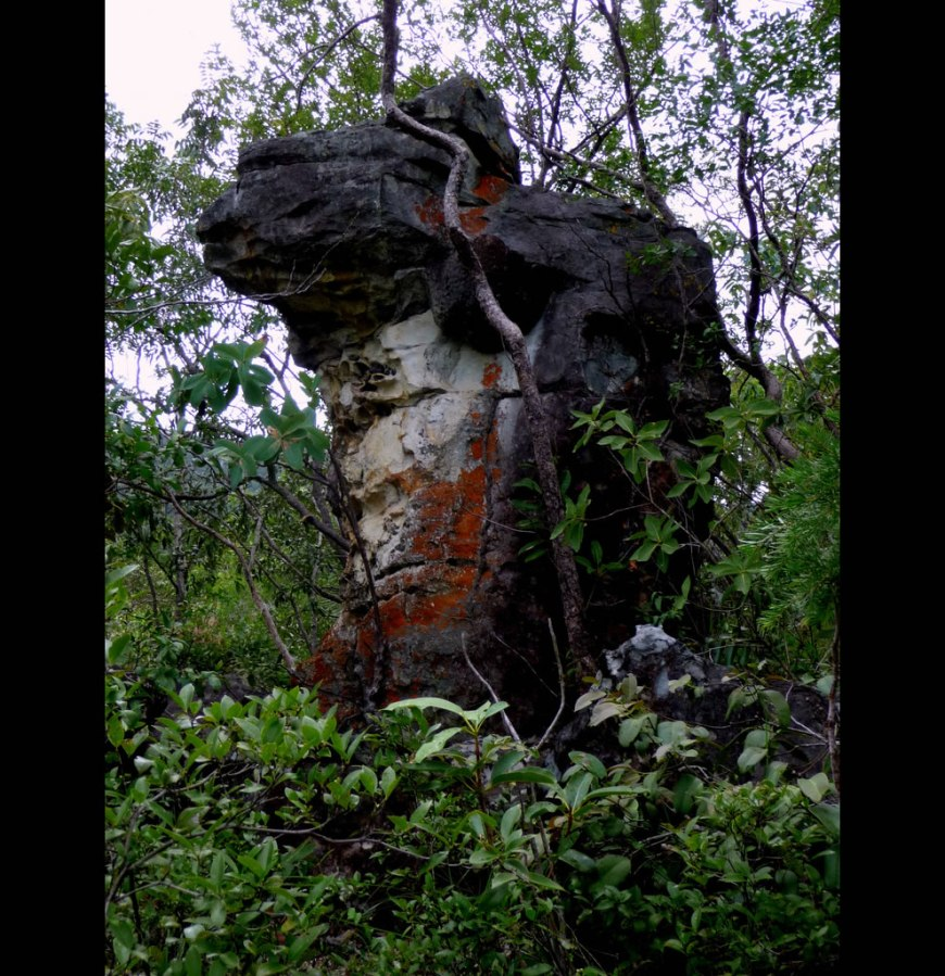 Stone Being at in the beautiful Brazilian National Park of Chapada dos Veadeiros, Goiás, Brazil