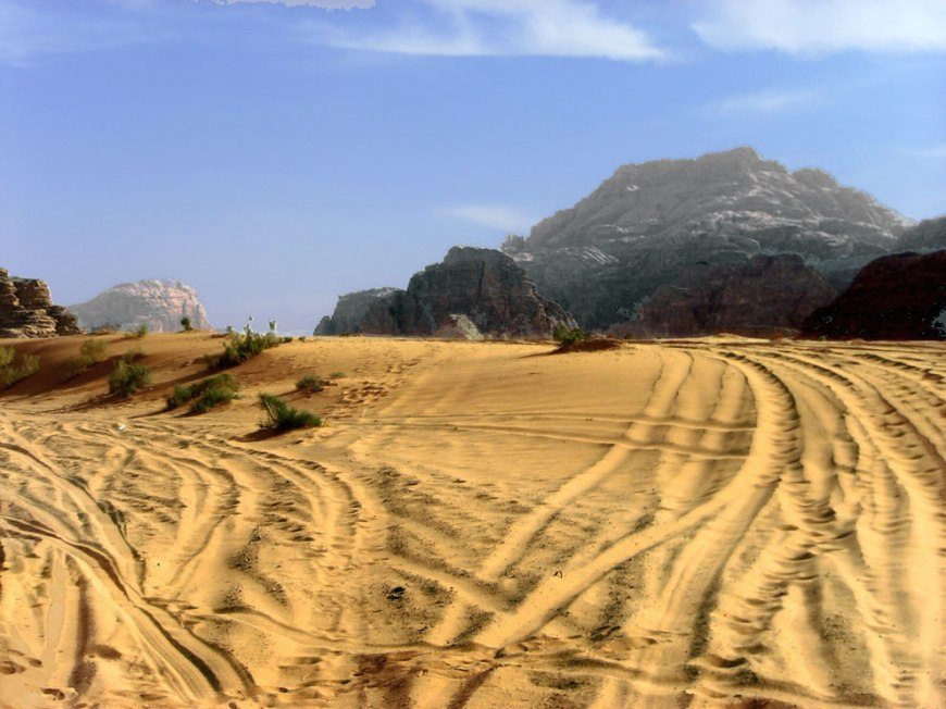 Those aren't camel tracks. Last riders drove through the desert sand at Wadi Rum