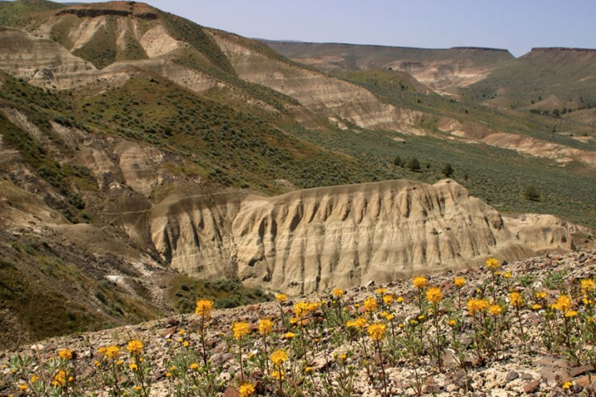 View from the Mascall overlook, John Day Fossil Beds National Monument, Oregon
