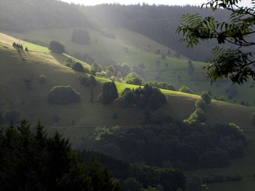 Morning light - start of a wonderful day black forest