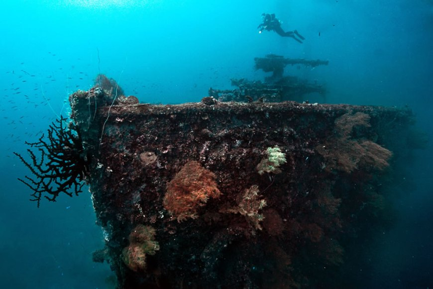 The bow gun of the San Francisco Maru at about 50m depth in Truk Lagoon