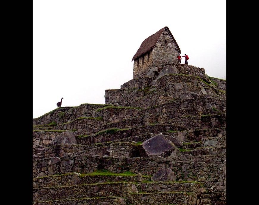 Terraces of Machu Picchu, Peru