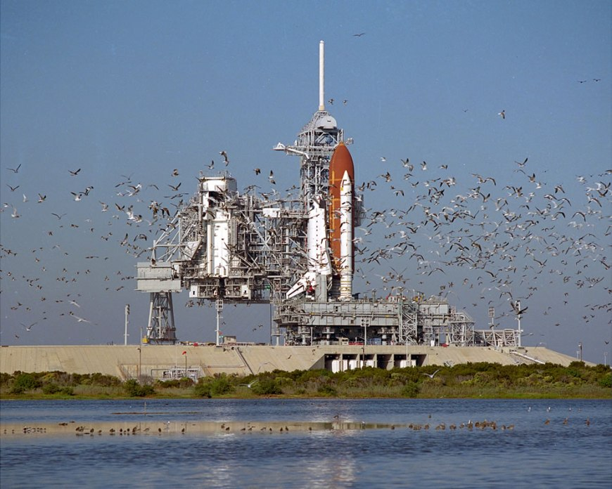A flock of birds take flight shortly after the Space Shuttle Atlantis arrives at Pad 39B