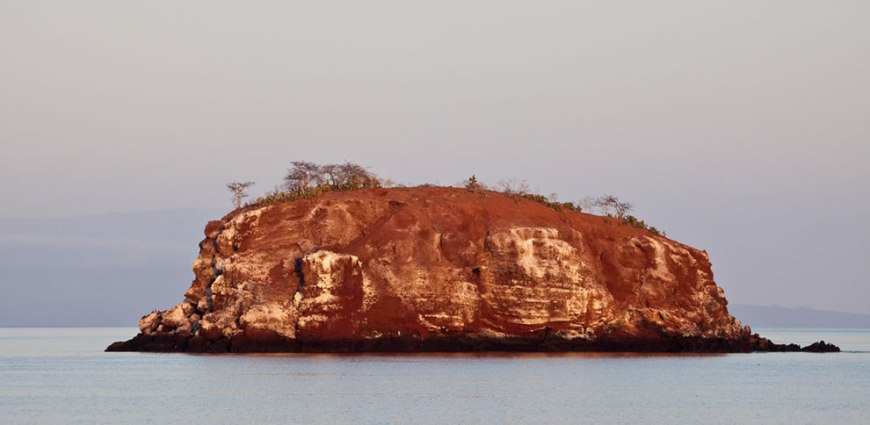 Galapagos Red lava in the early morning light