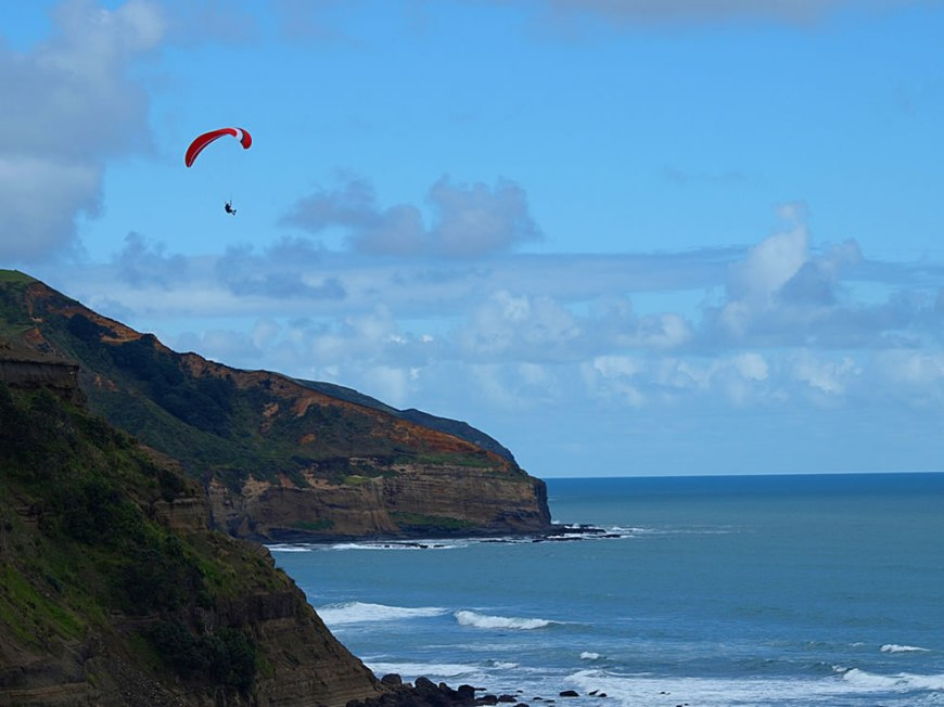 Paragliding at Muriwai Beach, New Zealand