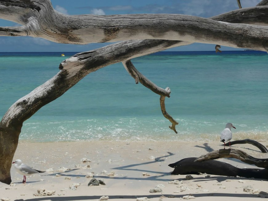 Queensland Great Barrier Reef Park