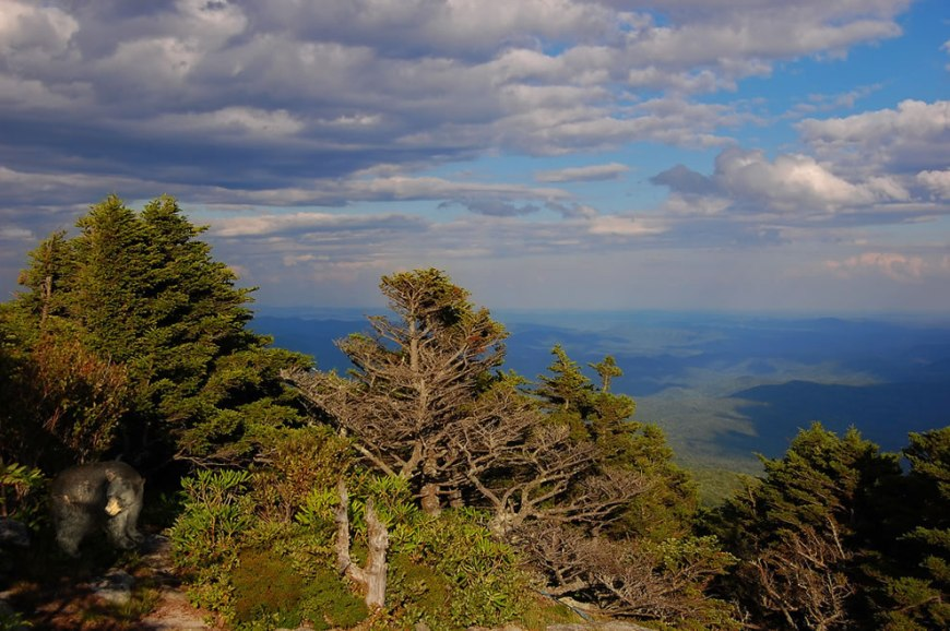'How To Disable Hibernation With Vista'  Grandfather Mountain, North Carolina
