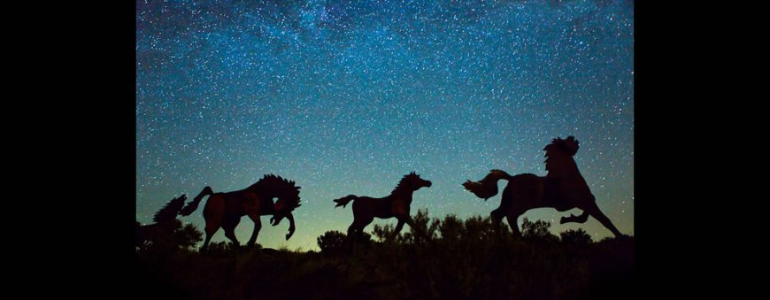 Prancing under the Starlight Wild Horses Monument Vantage, WA