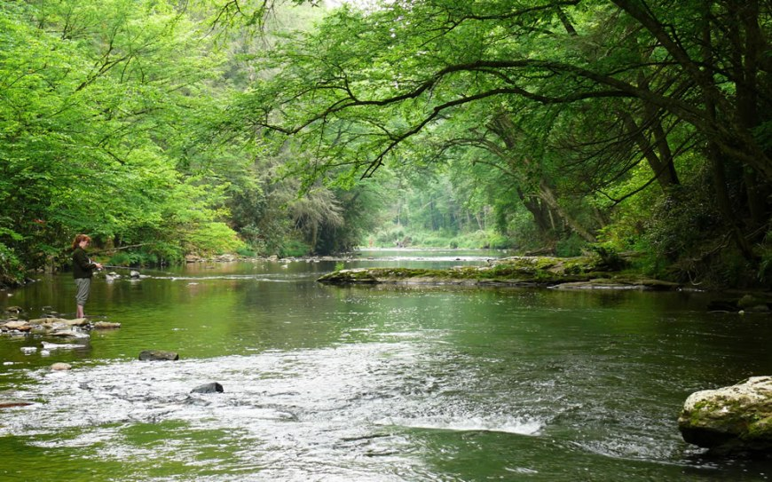 The Linville River is a popular recreational stream that flows from the southern face of Grandfather Mountain in the Blue Ridge Mountains
