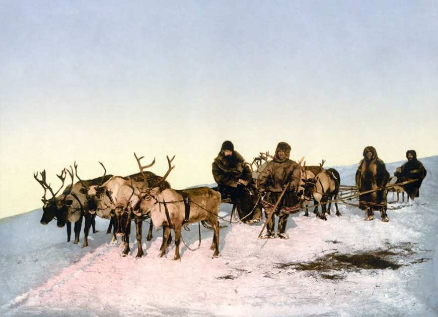 Traveling by reindeer, Archangel, Russia. photomechanical 1890-1900