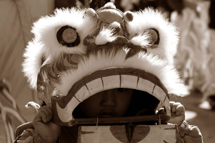 Dragon incognito, Chinese New Year, Chinatown, Chicago