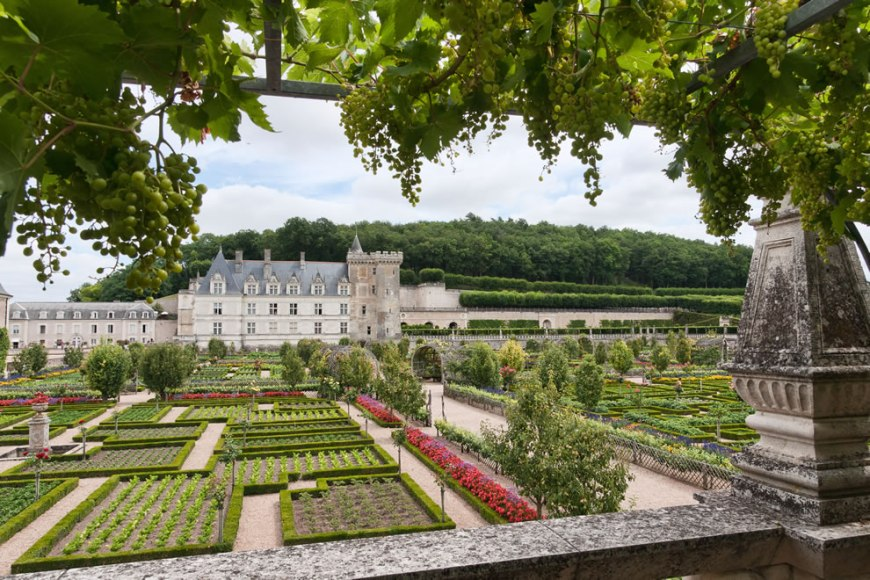 Château de Villandry - castle and gardens