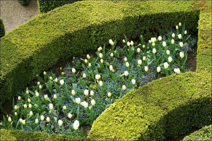 More details of the spectacular Villandry gardens