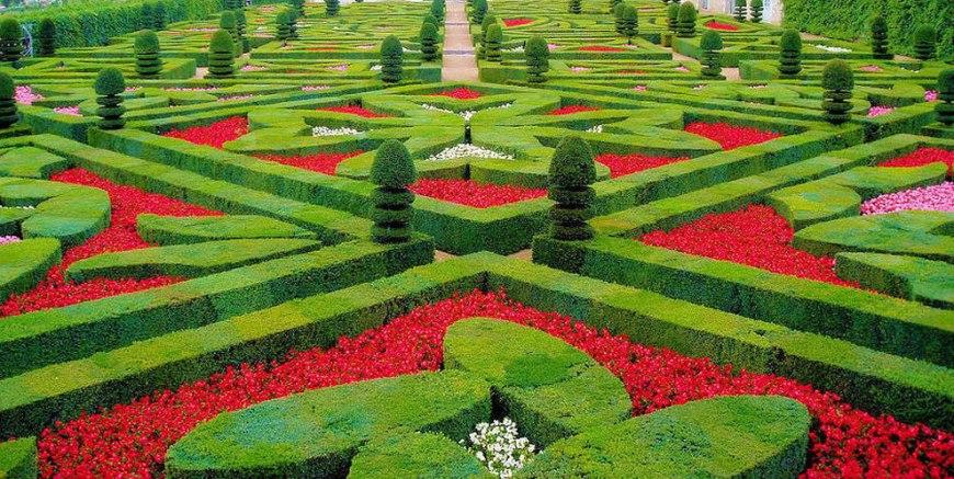 Topiaries at the château de Villandry gardens