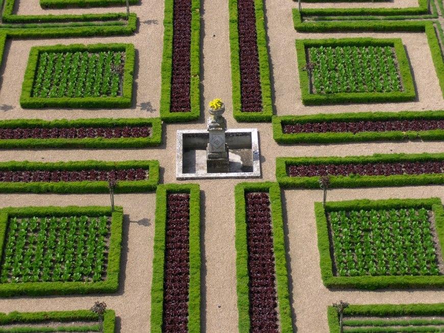 Villandry -- world's most organized vegetable garden