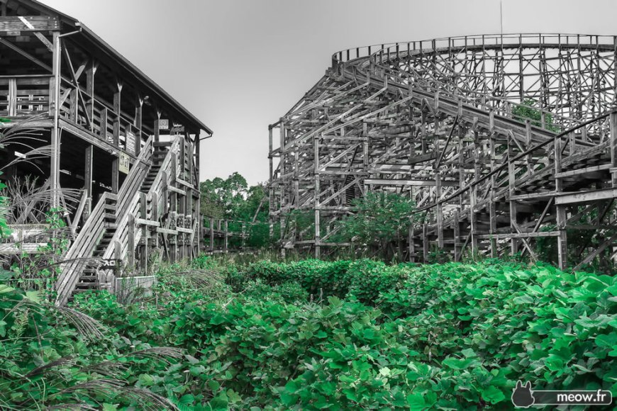August 2010 overgrown lineup for Aska roller coaster