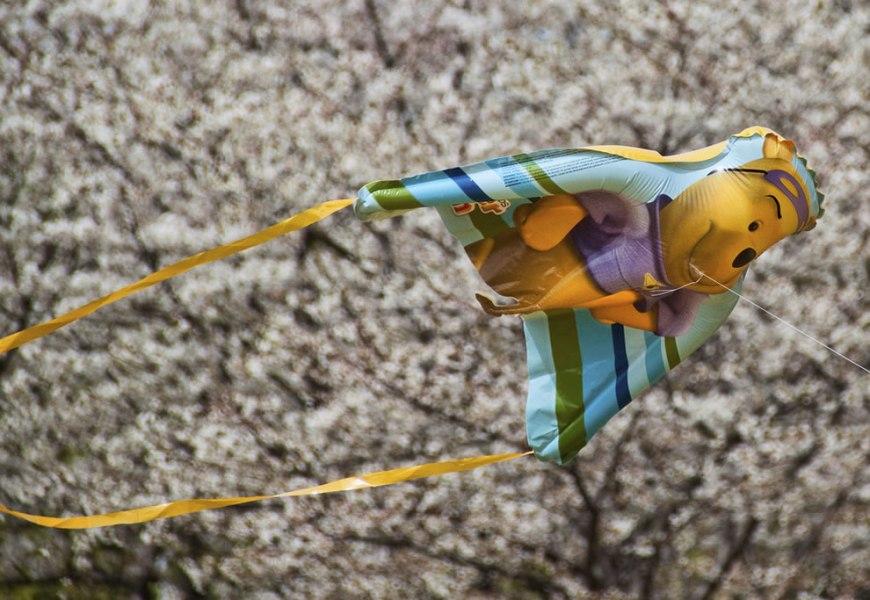 DC Cherry Blossom Festival and Winnie the Pooh kite