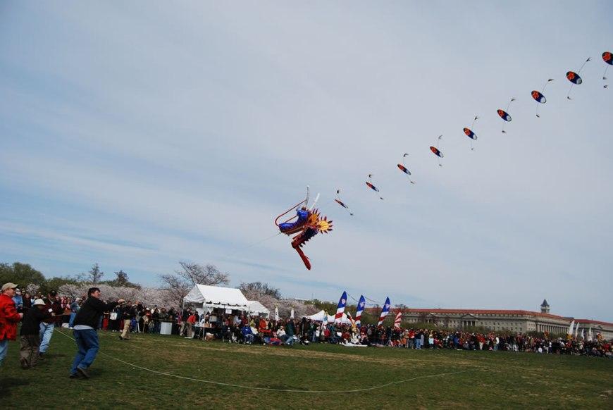 Kite Festival, Cherry Blossom Festival