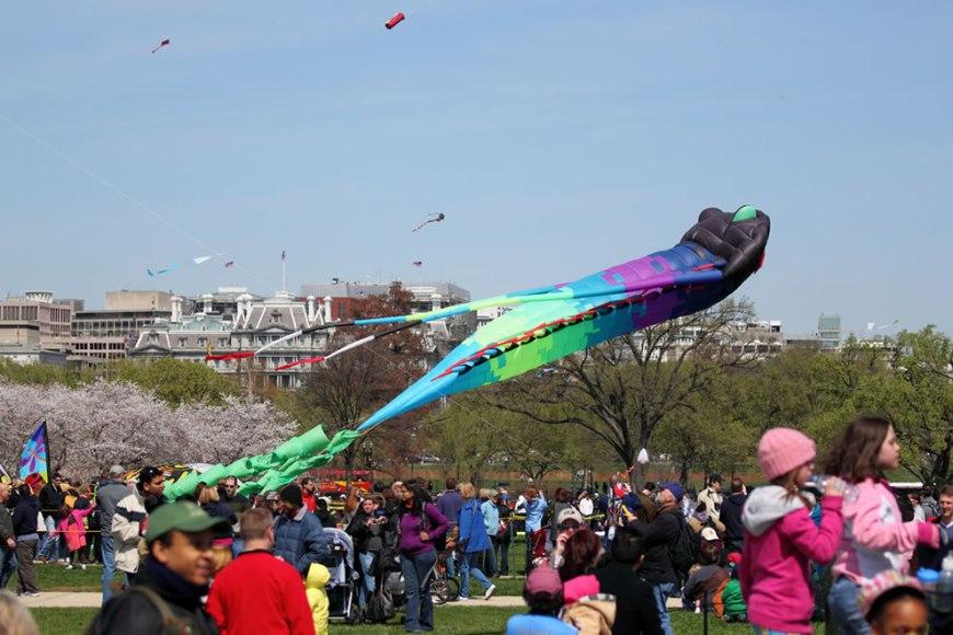 Kite Festival Giant Kite