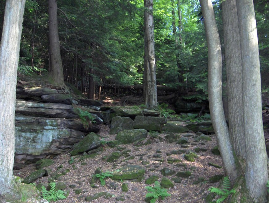Bedrock outcrops, such as this one, can be found throughout Cuyahoga Valley National Park