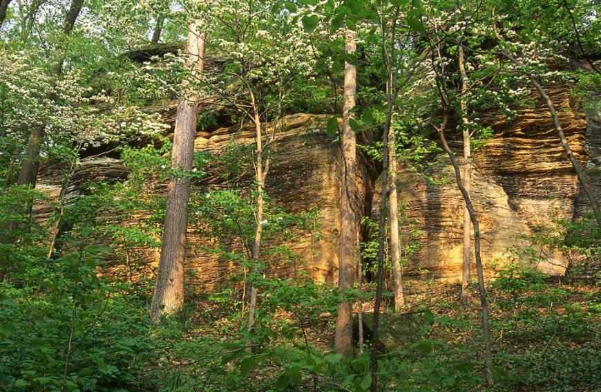 Ledges with spring trees at Cuyahoga Valley National Park