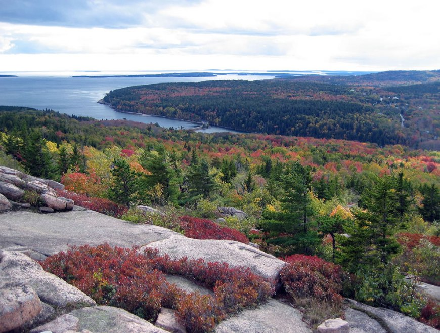 Pink granite with red bushes and ocean view, the view from Gorham Mountain during fall