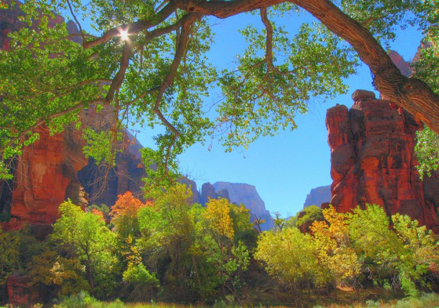 Early Fall, looking out from the Temple of Sinawava, Zion National Park, Utah, USA
