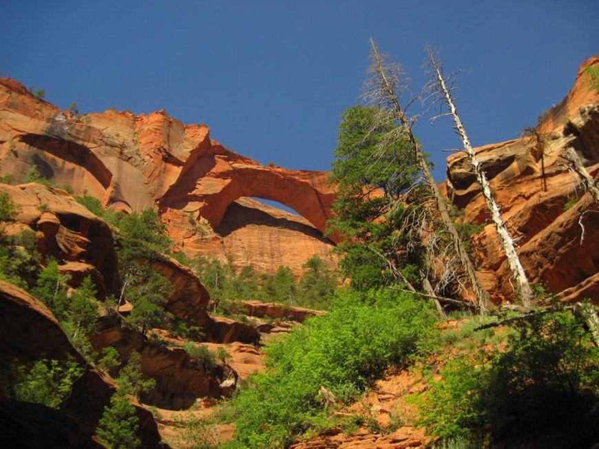 Kolob Arch in Zion's backcountry may be the second longest in the world