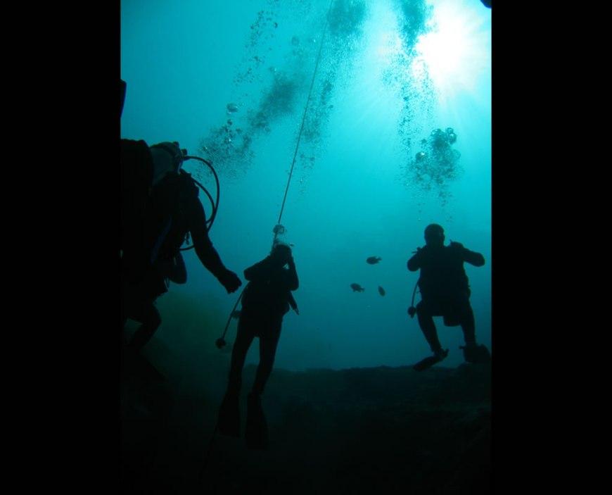 Other divers in Vortex Spring basin