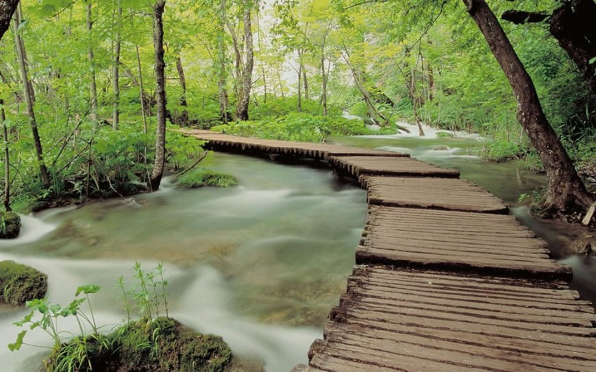 Walkway in Plitvice National Park