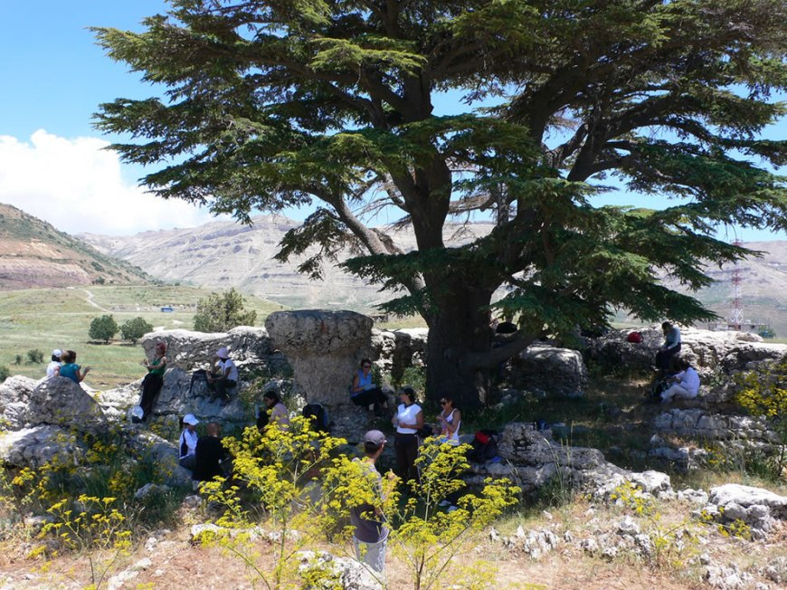 Walking in the Tannourine Cedars Forest Nature reserve, part of the Lebanon Mountain Trail