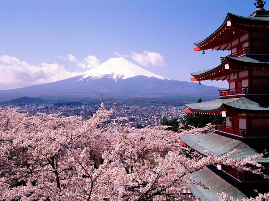 Mount Fuji, cherry blossoms trees and pagoda, Tokyo, Japan