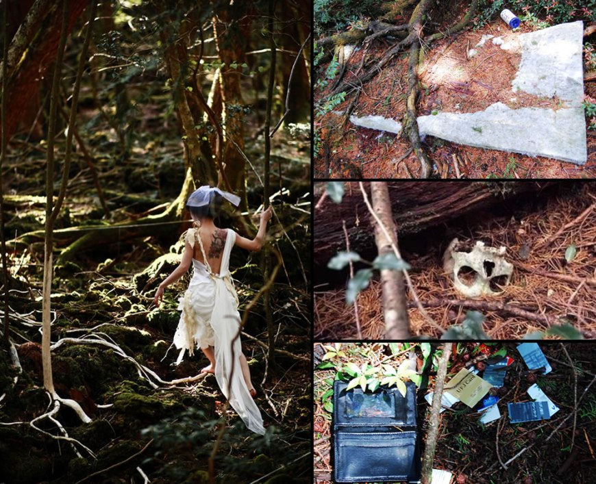 Suicides beyond the blocked and closed walking paths at Aokigahara Forest, Suicide Forest in the foothills of Mount Fuji